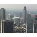 Verkehrsrecht Kanzlei Frankfurt am Main