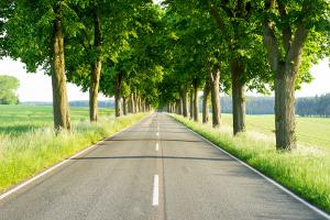 Geschwindigkeitsbegrenzung auf der Landstraße:  Wie schnell darf hier gefahren werden?